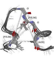 structural protein comparison